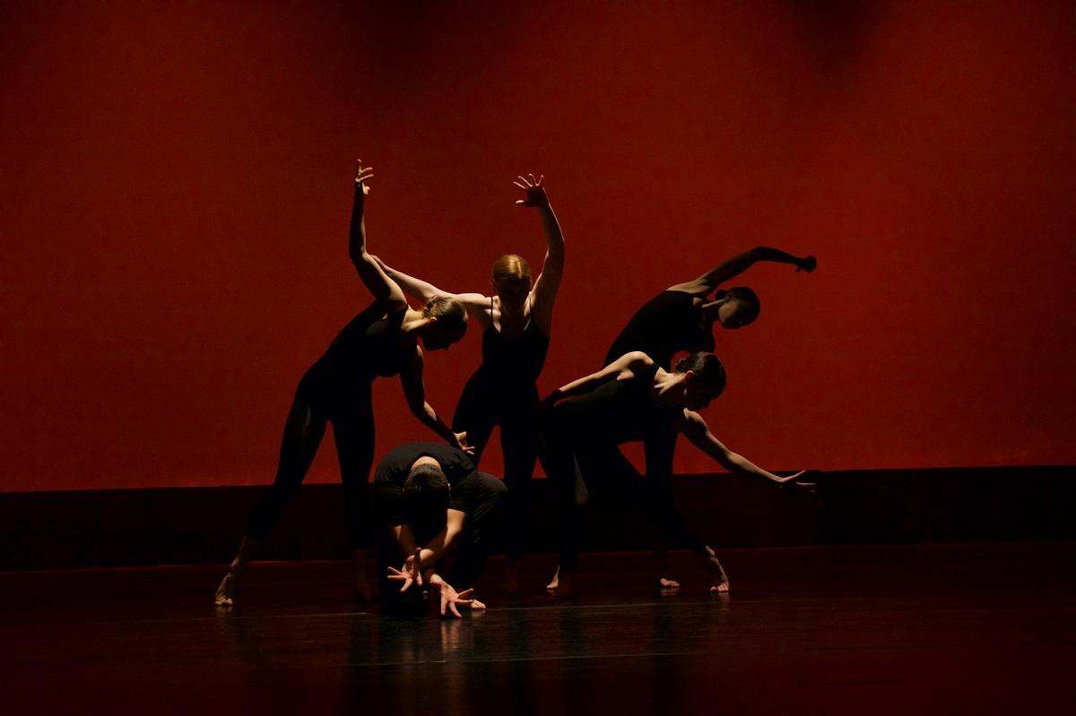 Dan plesa