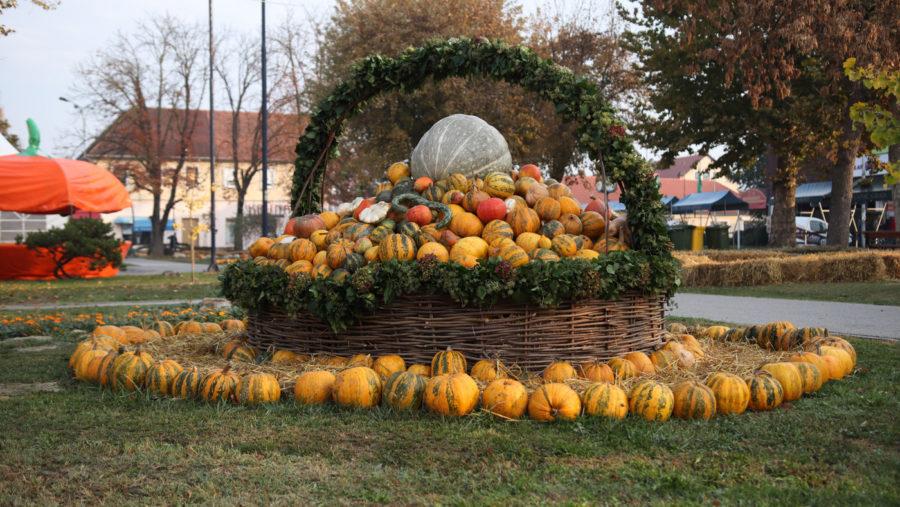 pumpkin bucijada
